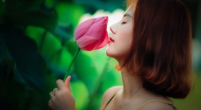 vietnam-1514246__340