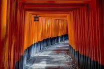 torii-1886975__480
